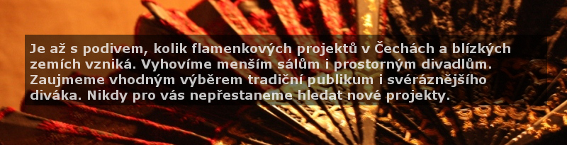 Flamenkové projekty