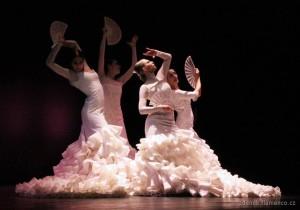 Compania Danza Flamenca Virginia Delgado